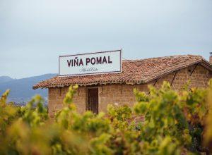viña-pomal-noticias_gourmet