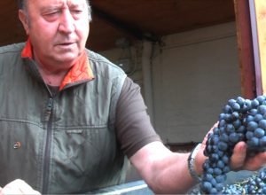 """Esto es """"Puro caviar de la Rioja Alavesa"""""""